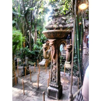 Indiana Jones! Disneyland Disneyland_cali Adventureland Indianajones Earlyinthemorning empty fun snake