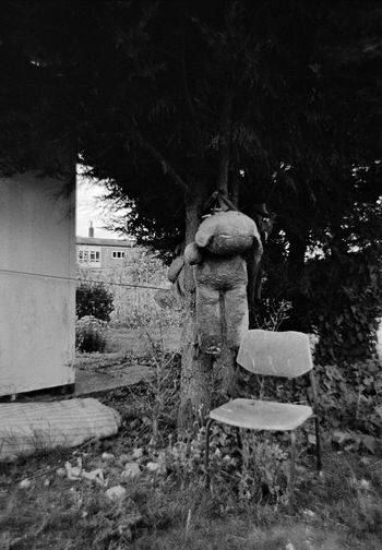 When Teddy Bears Have Had Enough (seen at an allotments in London) Abandoned Absence Bad Condition Chair Destruction Empty Fence Footpath Full Length In A Row Men Obsolete Old Outdoors Park Ruined Shadow Sunlight Teddy Teddy Bear Teddies Teddy Bears Chair Tree Hang Hanging Hung Photo Photos Foto Fotos Photography Photograph Photographer Documentary Reportage Taking Photos Street Photography Grab Shot Shotos Shooting Black & White Photography Monochrome Film Tree Tree Trunk