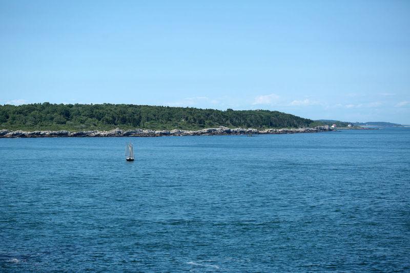 Sailboat Off