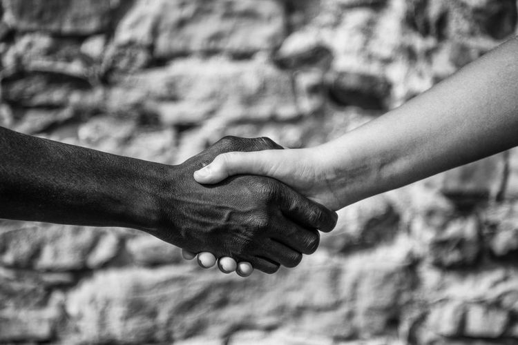 Close-up of multi-ethnic people shaking hands outdoors