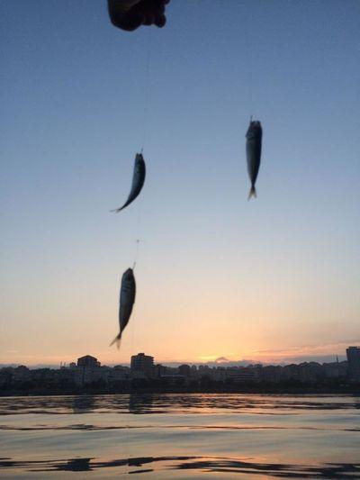 kısa günün bereketi..:)) Sea Eyem Best Edits Nature_collection Hello World