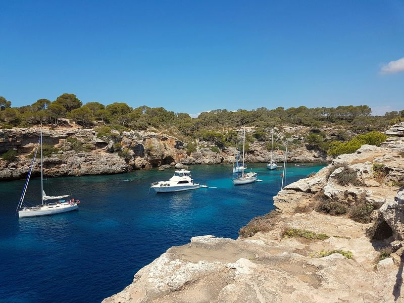 Some boats hanging out in a beautiful bay in Mallorca, Spain Boats Expensive Boats Boats In The Bay Boats In A Row Boats In A Bay White Boats Blue Water Crystal Clear Waters Blue Sea Blue Water Hidden Gems  Hidden Gem Blue Bay Check This Out Paradise Bay Relaxing Hanging Out Enjoying Life Travel Vacation Travel Photography Relaxing Moments Perfect View Mallorca SPAIN Vacation Time