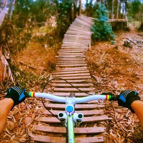 En el dual del Zendirt ?? Gopro Identibikes Dirtjump dh downhill dirt dirtybike descenso dirjumping laserena @identitibikes