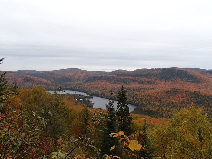 Lac Lajoie Lake Fall Colors Tree Beauty In Nature Sky Plant Scenics - Nature Tranquility Tranquil Scene Autumn Nature Mountain Landscape Outdoors