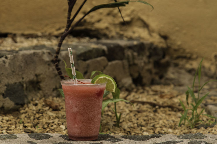 Close-up of drink on potted plant against wall