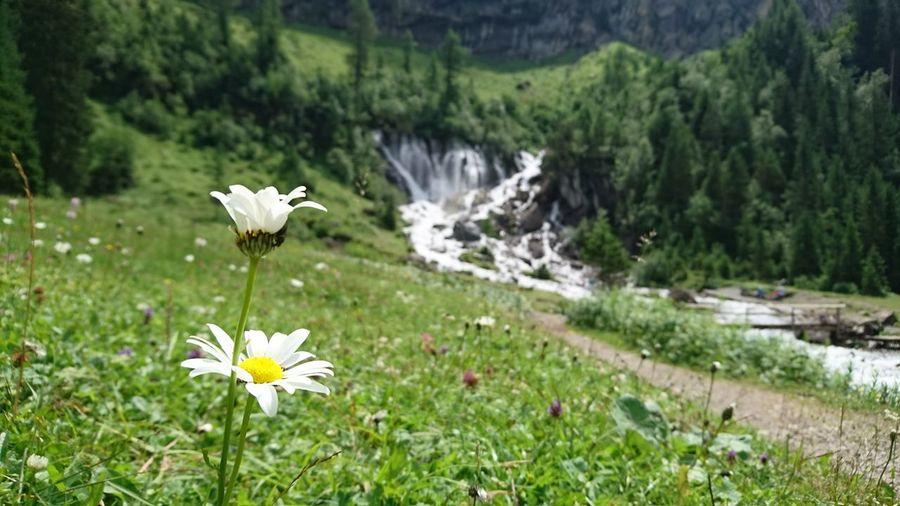 Siebebrünne Waterfall Lenk Simmental Switzerland The Great Outdoors - 2017 EyeEm Awards