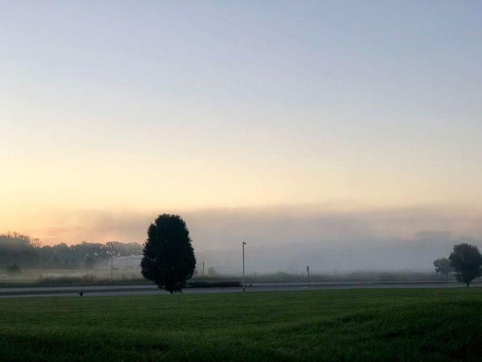 Fog rising Foggy Morning Sunrise Sky Landscape Environment