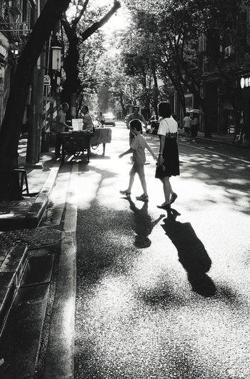 Tree City Women Men Shadow Togetherness Sunlight Road Walking Street