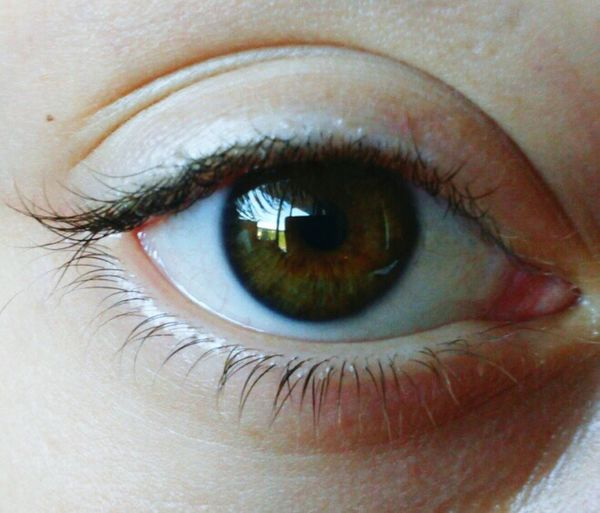 Eyesight Eye