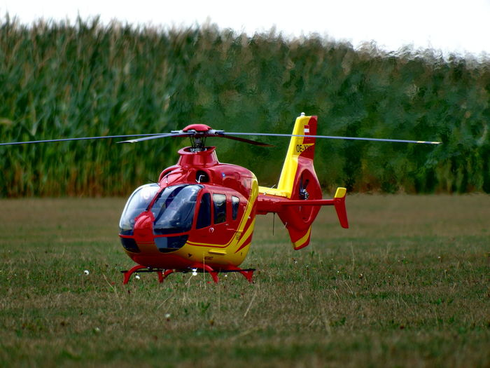 RC Heli Air Vehicle Day Field Flying Focus On Foreground Grass Offenbach/Quaich Outdoors Red Toy