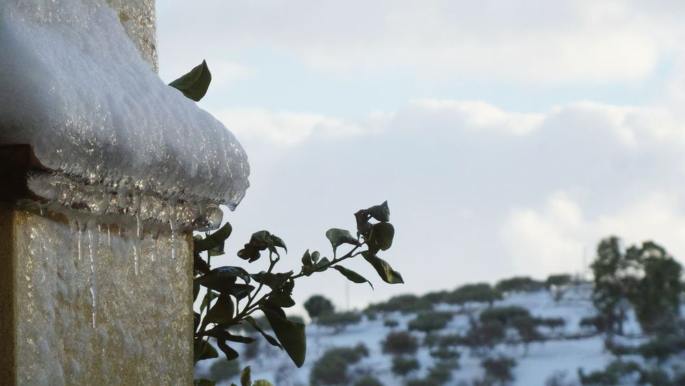 Cloud - Sky Outdoors Sky No People Nature Animal Themes Day Close-up Sicily Landscape Snow ❄ Extreme Weather Snow❄⛄