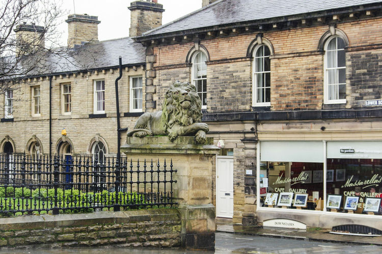 Building Exterior Architecture Built Structure Window Reflection Outdoors Day No People Street Photography Scenics Titus Salt Old Buildings Rainy Day Mill Town Bradford Street Saltaire Architecture Bricks Lion Statue Lion Statue Main Street Restaurant Gallery