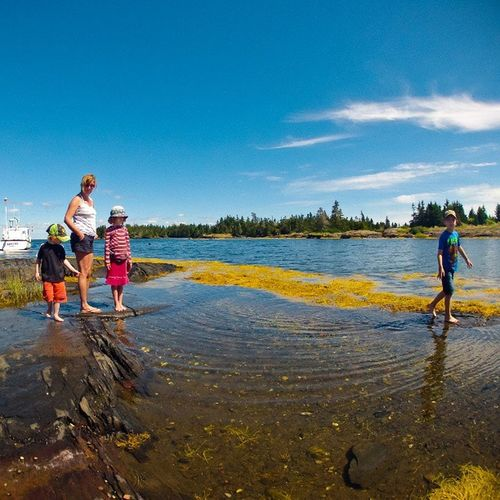 Kids looking for Crabs in a Tidepool , Stonehurst , NovaScotia . gopro igersottawa visitnovascotia