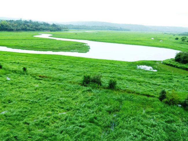 Monsoonmagic Goa