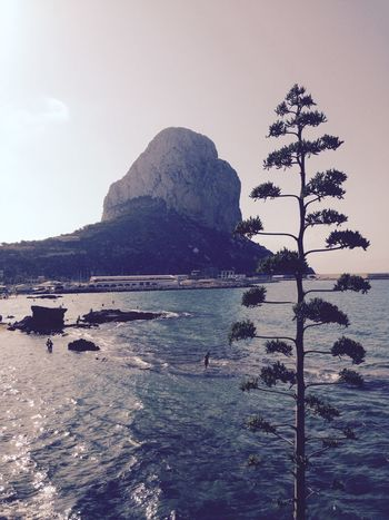 Peñon Ifach Calpe Calp España Espagne Landscapes With WhiteWall Sea Sea And Sky Trees Sun Sunrise