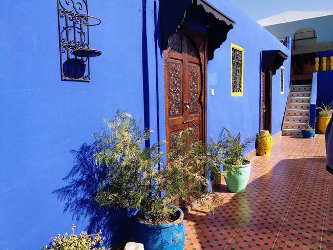 Built Structure Day Architecture Outdoors Building Exterior No People Nature Morocco 🇲🇦 Marrakech Riad Bleu Majorelle