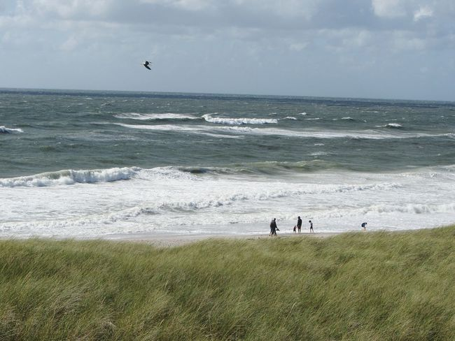 Nature Landscape Life Is A Beach Taking Photos Stormy Weather Sea Summer Holidays 2014 Great Views Landscapes With WhiteWall