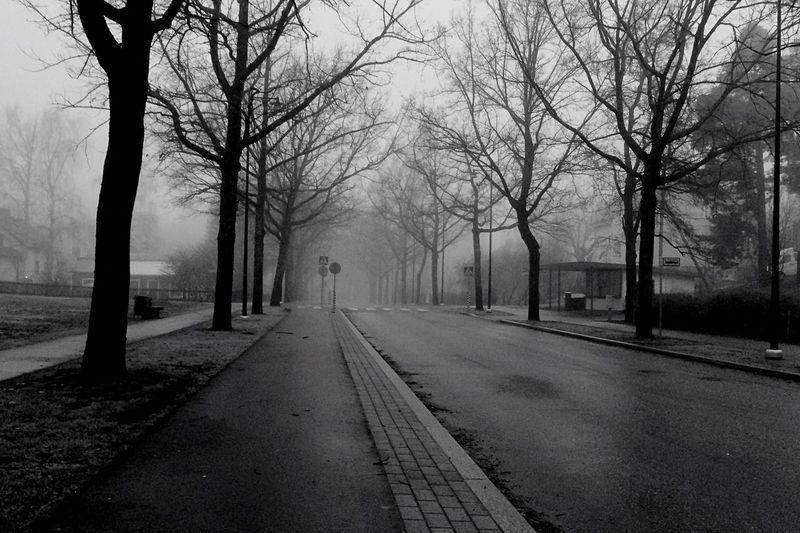 View of empty street in fog