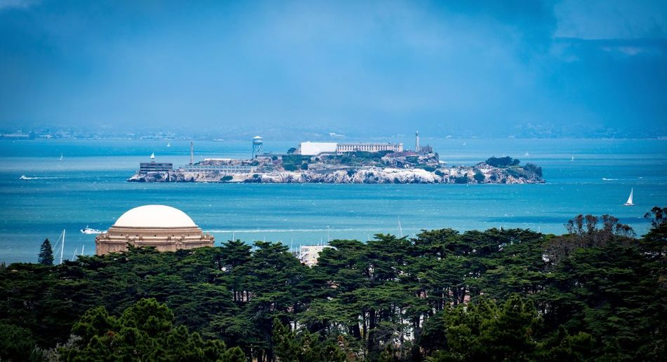 San Francisco Alcatraz City Tree Cityscape No People Nature Scenics Dome Beauty In Nature Day Blue Island Outdoors Sky Water Horizon Over Water Architecture Built Structure Building Exterior Sea
