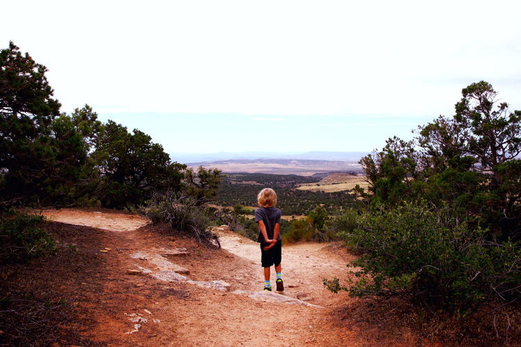Rear view of boy walking on pathway at dinosaur national monument