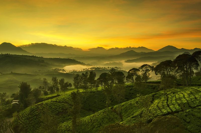 Scenics - Nature Beauty In Nature Environment Sky Landscape Mountain Sunset Agriculture Nature
