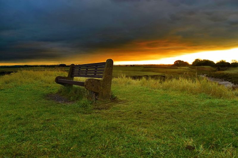 Sky Nature Sunset Grass Cloud - Sky Tranquility Field Beauty In Nature Scenics Tranquil Scene No People Outdoors Idyllic Landscape Green Color Domestic Animals Day Bench