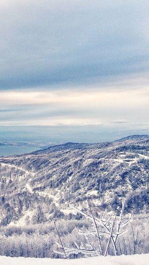 Snow Winter Mountain First Eyeem Photo