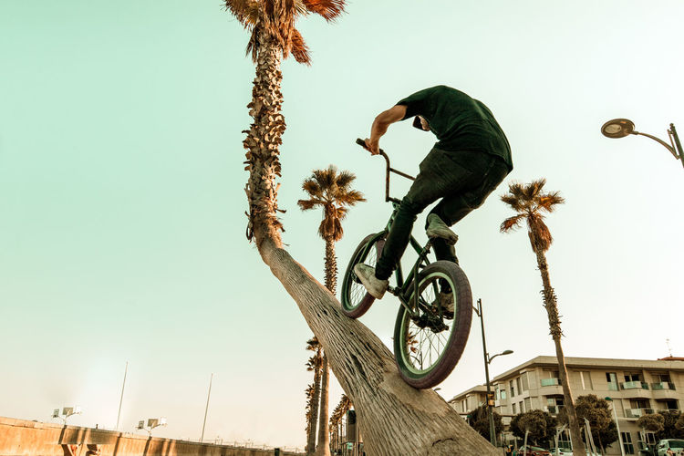 Low Angle View Of Man Riding Bicycle On Tree Trunk Against Clear Sky