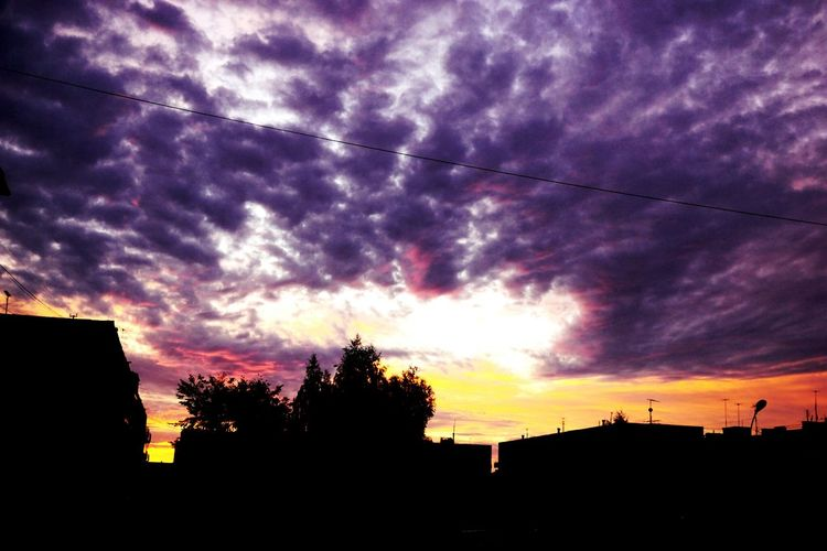 I love sky 💜 Sunset Cloud - Sky Cloud Outline Sky Tree Nature Day Color Fragility Happen Beauty In Nature Looking At Camera Beauty Love Flower Yellow Person Lifestyles Plant Leaf No People Cool Nature Majestic