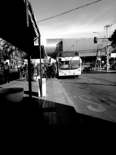 Bus Station Transportation Transantiago Bus Public Transportation