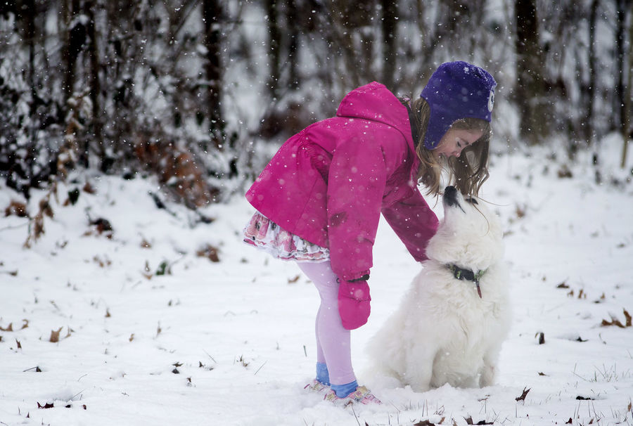A six-year-old girl kisses her American Eskimo dog while it snows in their backyard during winter. American Eskimo Animal Themes Child Childhood Children Only Cold Temperature Day Dog Domestic Animals Elementary Age Friendship Full Length Girls Mammal Nature One Animal One Person Outdoors People Pets Playing Real People Snow Warm Clothing Winter
