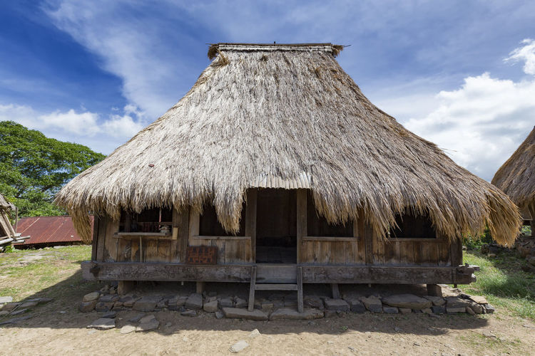 A Traditional house in the Wologai traditional village in East Nusa Tenggara, Indonesia. Coffee Houses INDONESIA Moni Rice Tourist Travel Tree Art Attraction Authentic Culture Destination East Nusa Tenggara Ethnic Hard Wood House Kelimutu Landmark Sculpture Tourism Traditonal Tribe Village Wologai