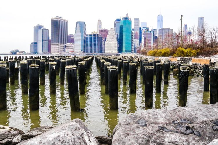Brooklyn Brooklyn Bridge Park Newyorkcity Perspective Cobblestone New York Freedom Tower Newyork Newyorker Nature Nature_collection City Cityscapes