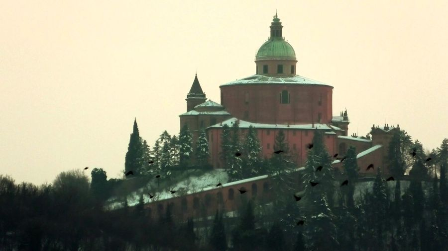 close up of San Luca basilica church with snow on Bologna hill in Italy with a flock of birds flying Bologna Bologna, Italy Italy San Luca San Luca's Church San Luca Bologna San Luca Skyline Church Cathedral Basilica Night Sunset Religion Dome Madonna Holy Mary Holy Virgin Madonna Di San Luca Dawn Snow Snowy Winter Building Exterior Architecture Built Structure Sky Nature Building Tree Place Of Worship Clear Sky Spirituality Belief History Plant The Past No People Outdoors Spire