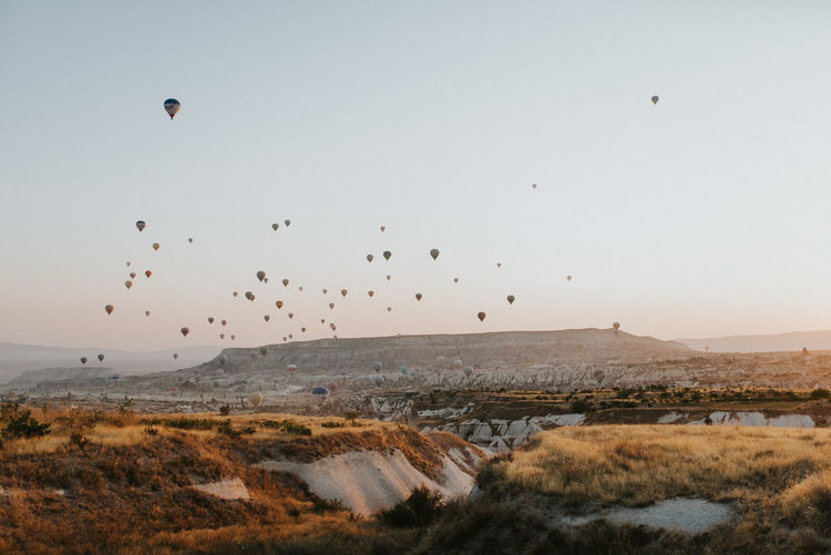 Capture The Moment Balloon Beauty In Nature Bird Cappadoccia Clear Sky Environment Flying Group Of Animals Land Landscape Mid-air Mountain Nature No People Non-urban Scene Outdoors Scenics - Nature Sky Tranquil Scene Tranquility Vertebrate My Best Travel Photo