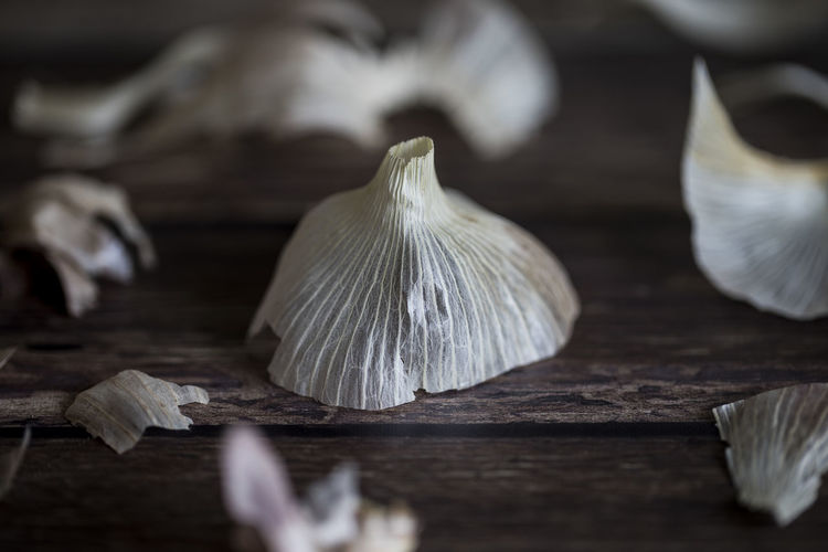 Garlic Food Food And Drink Selective Focus Freshness Wood - Material Close-up Spice Vegetable White Color Ingredient Garlic No People Indoors  Still Life Healthy Eating Table Wellbeing Mushroom Garlic Bulb Raw Food Garlic Clove