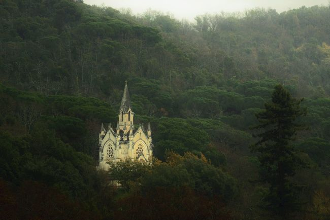 Chapel Church Fog Forest Magic Forest Misterious Mistycal Tranquility