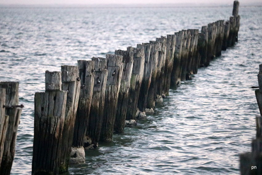 Beauty In Nature Blue Day Diminishing Perspective Groyne Idyllic In A Row Jetty Nature No People Non-urban Scene Ocean Outdoors Pier Pole Remote Rippled Scenics Sea Sky Tranquil Scene Tranquility Water Wood - Material Wooden Post