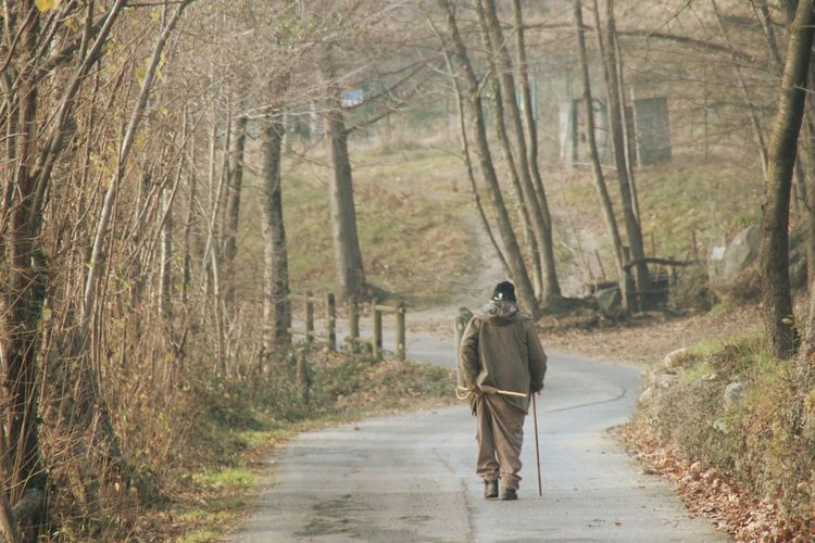 Rear view of old man walking on country road