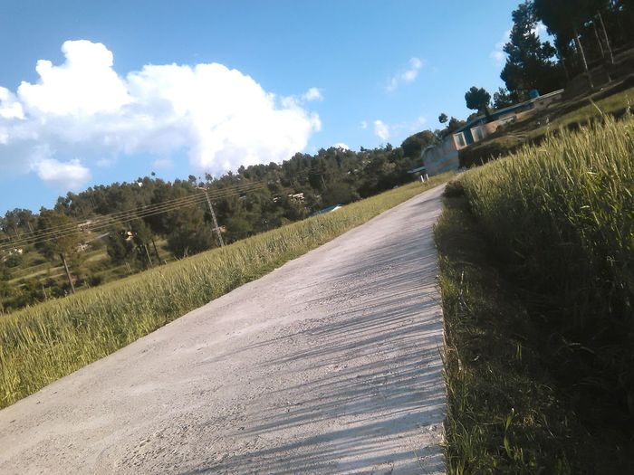 Adventure Travel Road Trip Grassy Clouds Dramatic Angles 17.62°