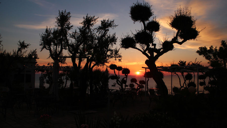 Esos atardeceres inolvidables... Beauty In Nature Day Leisure Activity Lifestyles Men Nature Orange Color Outdoors Palm Tree People Popckorn Real People Scenics Silhouette Sky Sun Sunset Togetherness Tree