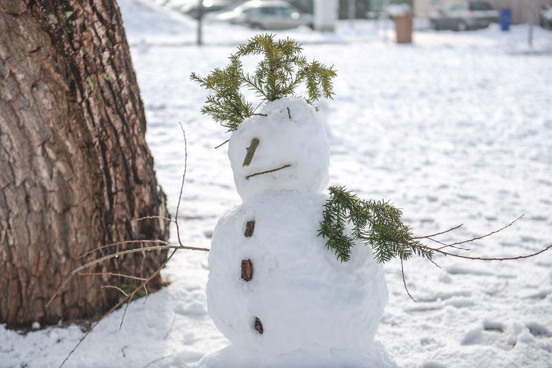 Snowman By Tree On Field
