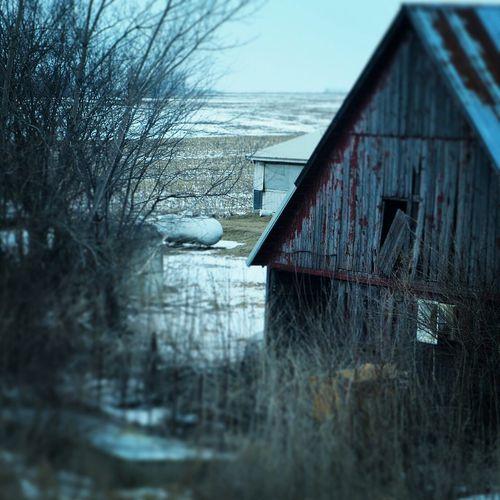Iowa love barns old wood