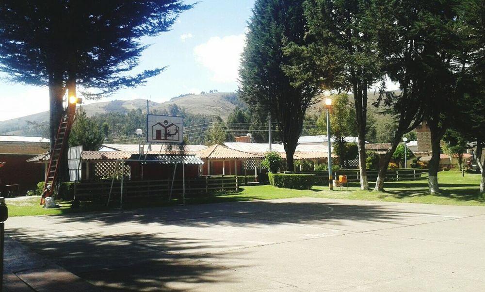 Day Día De Campo Paisaje Paisaje Natural Campo Celebracion