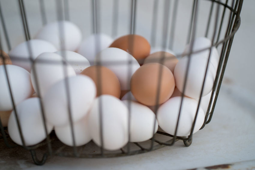 Basket Close-up Container Egg Eggs Food Food And Drink Freshness Healthy Eating Indoors  Large Group Of Objects No People Raw Food Still Life Wellbeing White Color