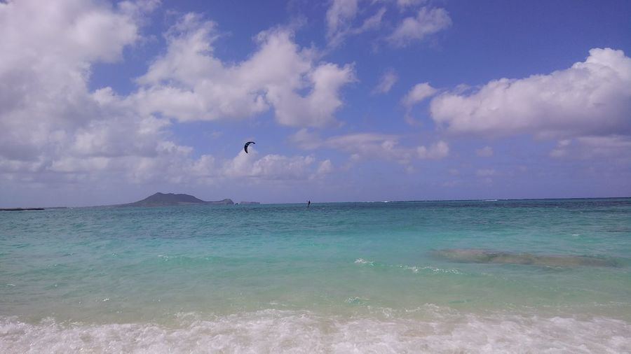 Blue Sea Hawaii Turquoise Colored Beauty In Nature Bird Blue Sky Cloud - Sky Flying Horizon Horizon Over Water Marine Nature No People Ocean Scene Outdoors Parachute Paradise Parasailing Parasol Scenics - Nature Sea Sky Tranquil Scene Turquoise Colored Water