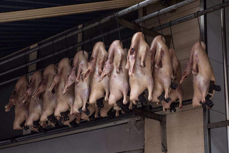Duck Meat Hanging On Hooks At Butcher Shop