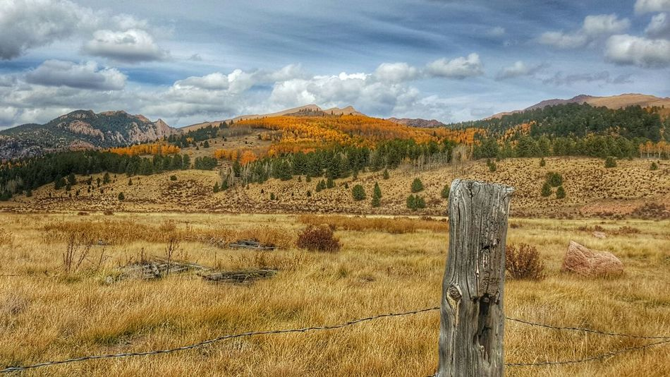 Check This Out Colorado Pasture Colorful Colors Fall Color Fall Leaves Aspens Samsungphotography Samsung Galaxy S6 Edge Fence Fencepost Barbed Wire