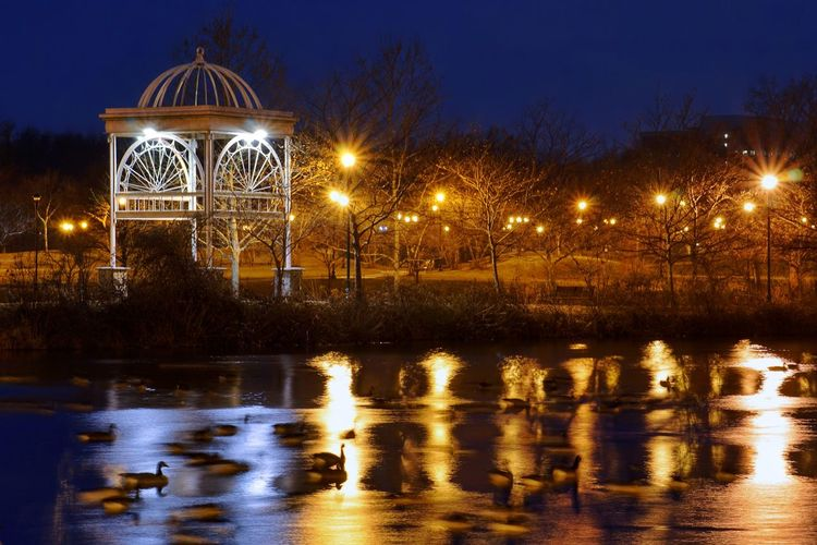 Chilly sheen Gazebo Gazebo At The Park Pond Park Night Nightphotography Brr Parks Geese