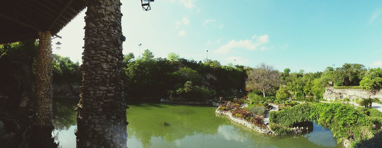 From, when I went to Texas Texas Chinese Garden Paradise